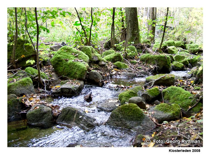 Mossiga stenar vid vatten - Klosterleden