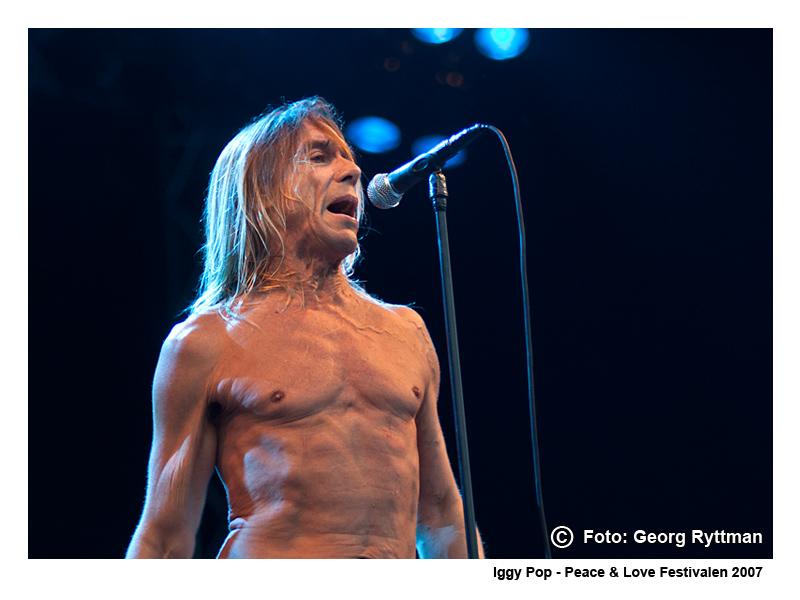 Iggy Pop - Peace & Love Festivalen 2007