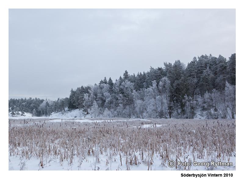 Söderbysjön