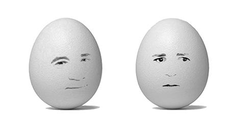 Egg-politiker