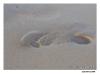 Fotspår i sanden Zakynthos